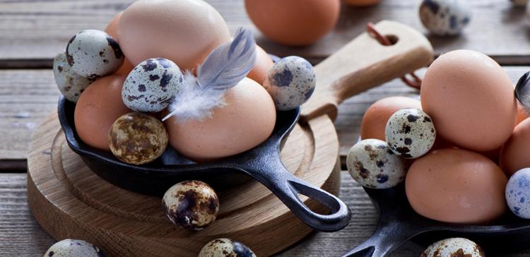 Лечение перепелиными яйцами и сахарный диабет