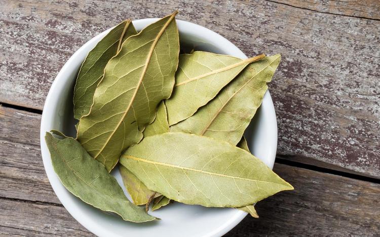 Народные рецепты с лавровым листом